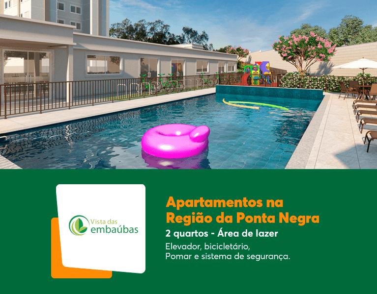 AM_Manaus_VistaDasEmbaubas